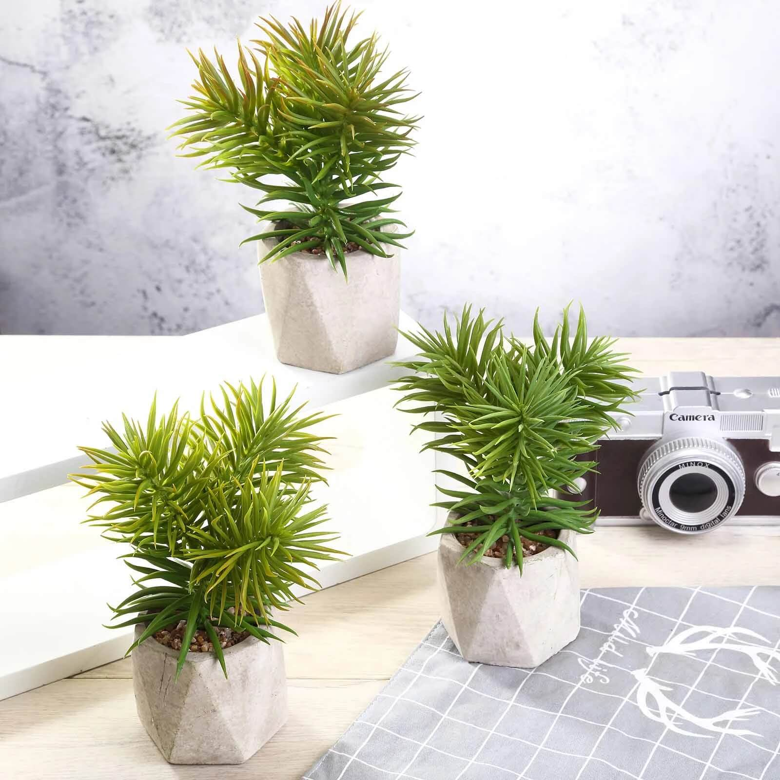 artificial-succulent-plants
