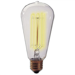 Squirrel Cage Edison Bulb