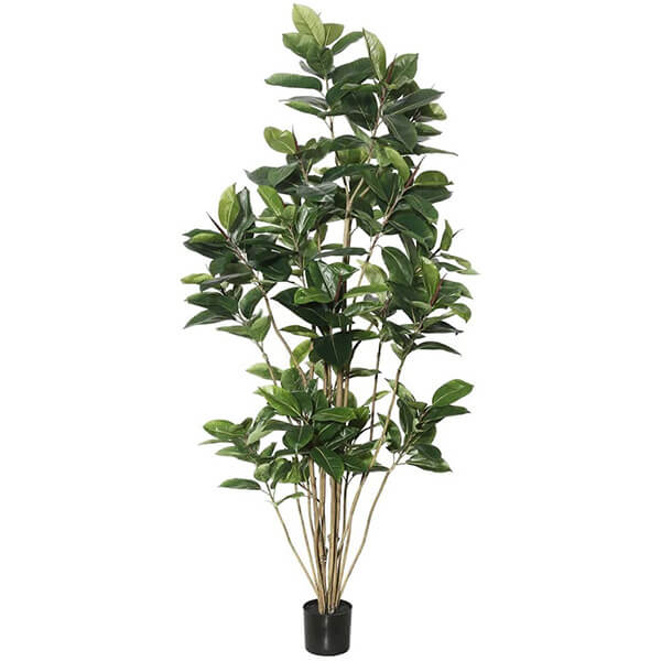 Artificial Rubber Tree (7 ft)
