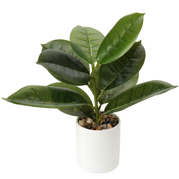 Tabletop Potted Artificial Rubber Plant in Ceramic Pot