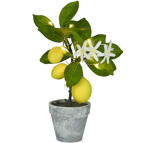 Topiary Lemon Plant with LED String (11.4 in)