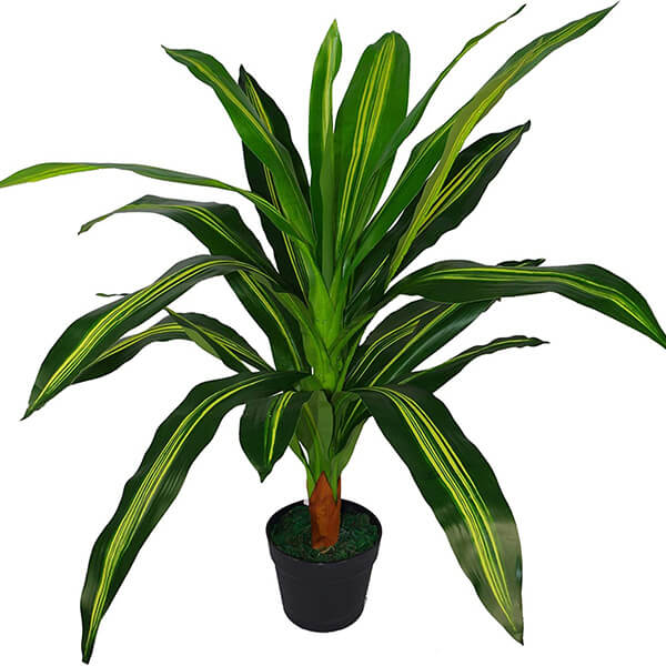 Artificial Dracaena Plant with Long Leaves (2 ft. 11 in)