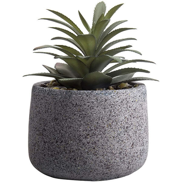 Potted Faux Agave Plant with Cement Pot (6.5 in)