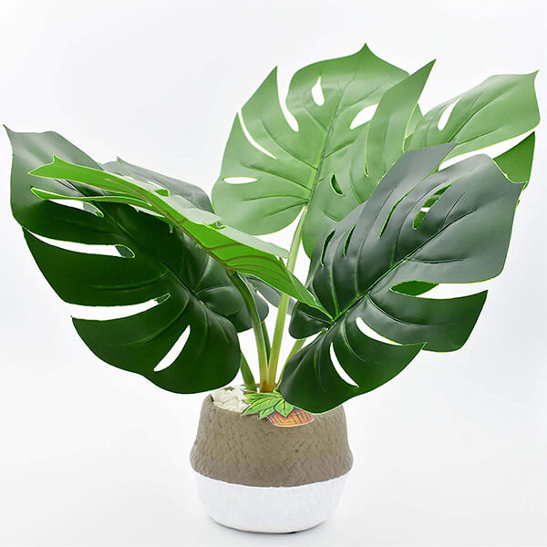 Tabletop Monstera Plant with a Handmade Cement Pot (1 ft. 1 in)