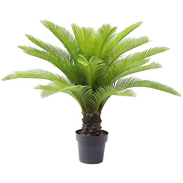 Sago Fake Palm Tree for Indoors (3 ft)