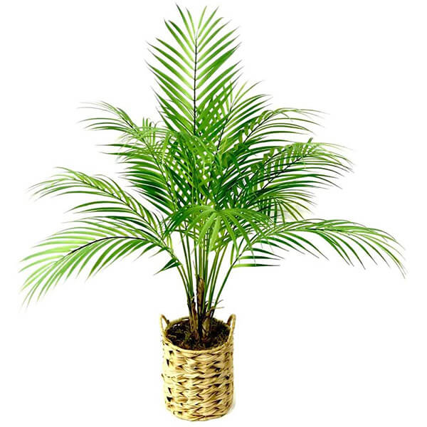 Fake Indoor Palm Tree in Woven Planter (2 ft. 4 in)