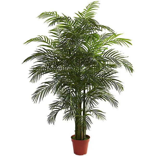 UV Resistant Artificial Areca Plant for Outdoor Usage (6 ft. 6 in)
