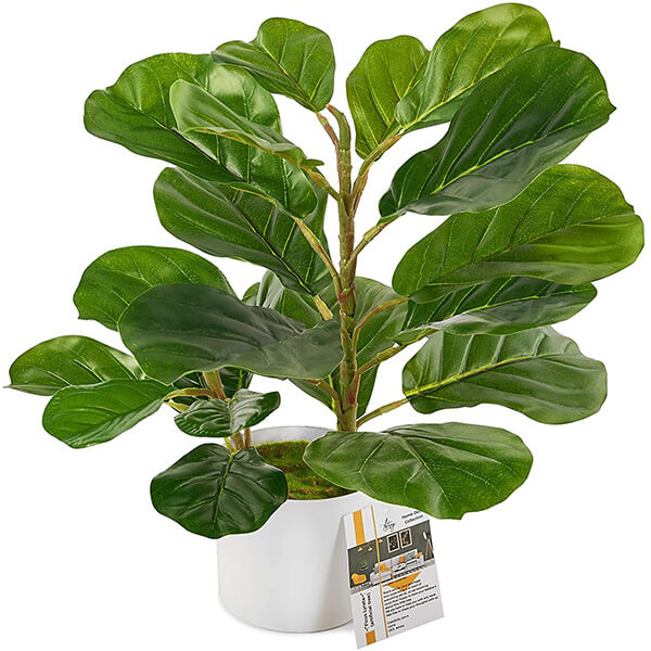 Tabletop Faux Fiddle Leaf Fig Tree in a White Pot (1 ft. 6 in)