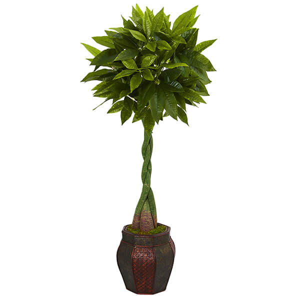 Artificial Money Tree with Decorative Planter (5 ft.)