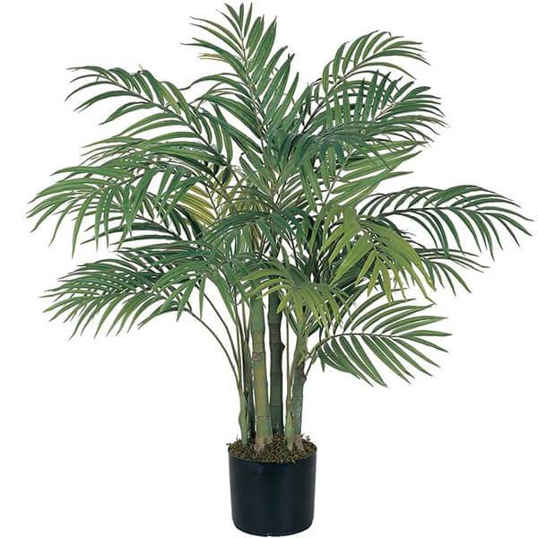 Silk Palm Tree with Planter and Moss (3 ft)