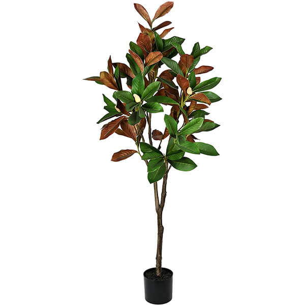 Faux Magnolia Plant with Brown Leaves (5 ft)