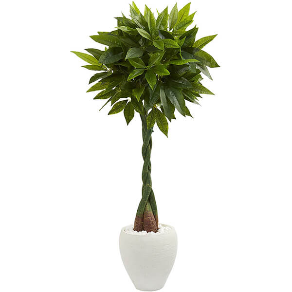 Faux Money Tree with White Planter (5 ft)