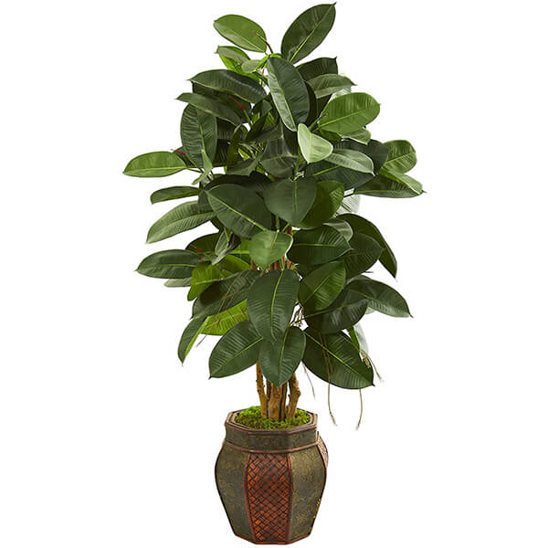 Fake Rubber Plant (4 ft. 4 in)