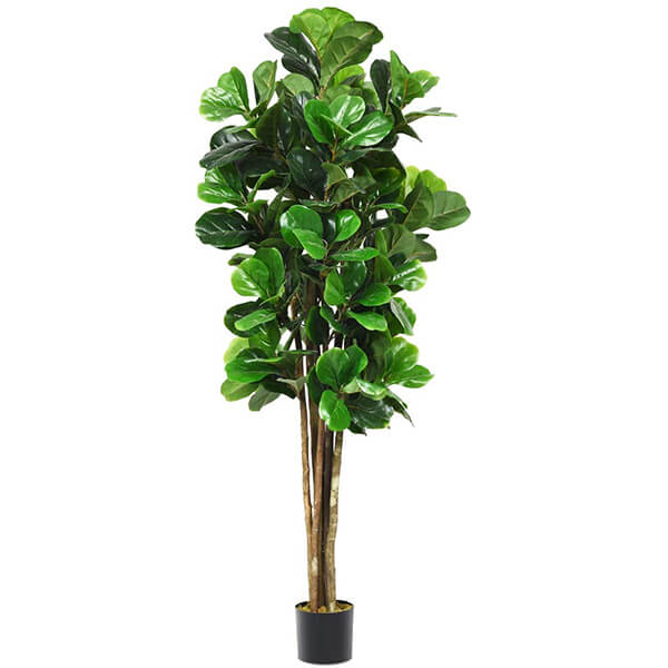 Fuller Looking Artificial Fiddle Leaf Fig Tree (5 ft. 11 in)