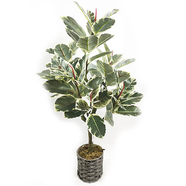 Rubber Fake Plant with Variegated Leaves (2 ft. 10 in)