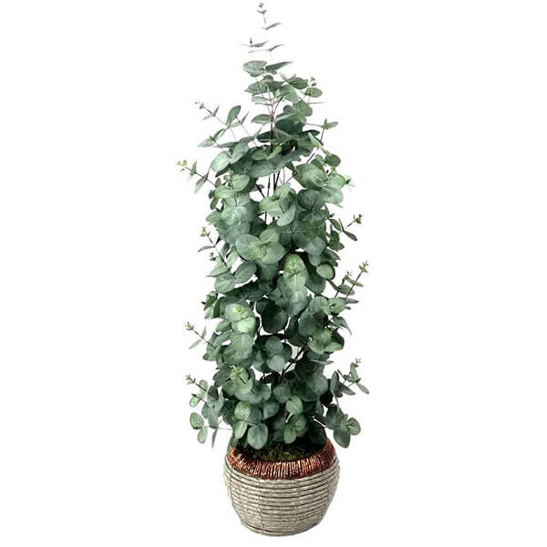 Artificial Eucalyptus Plant (2 ft. 8 in) With Free LED String