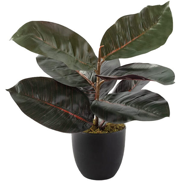 Tabletop Faux Rubber Plant (1 ft. 6 in)